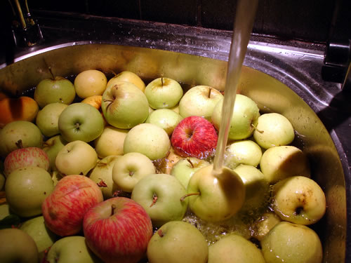 apples getting a soak