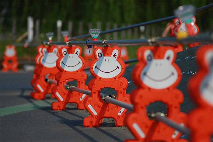 cute frog pylons