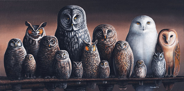 painting owls of canada