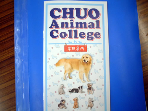 chuo animal college