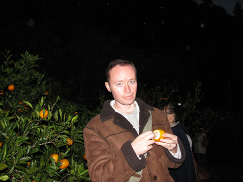 mikan picking at night mike