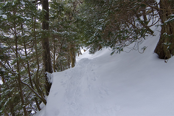 nikko yunoko tough trail winter
