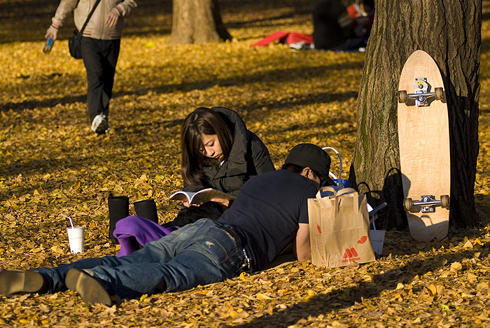 yoyogi park autumn resting couple